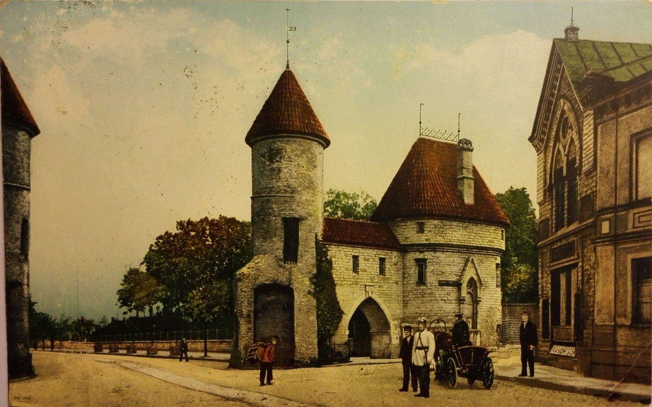 эстония в открытках новая семья появилась