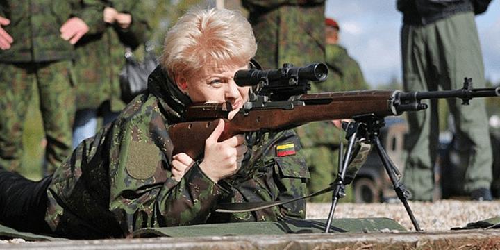 Обзор политической ситуации в Литве  14 – 19 ноября 2016 г.