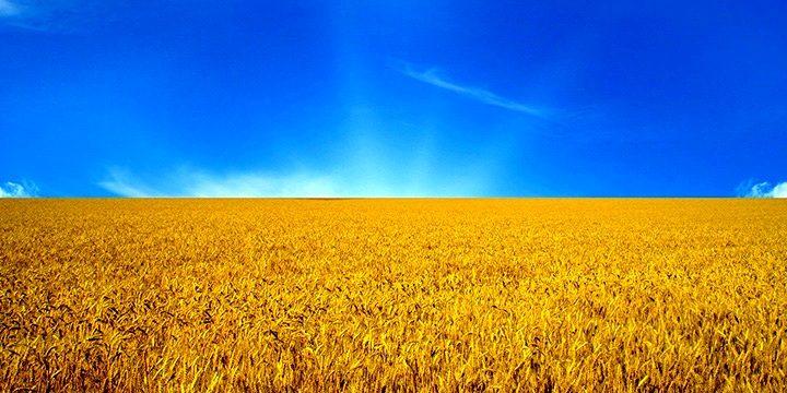 http://www.rubaltic.ru/upload/iblock/9e9/9e93b9126825b7251a888496d29ad974.jpg