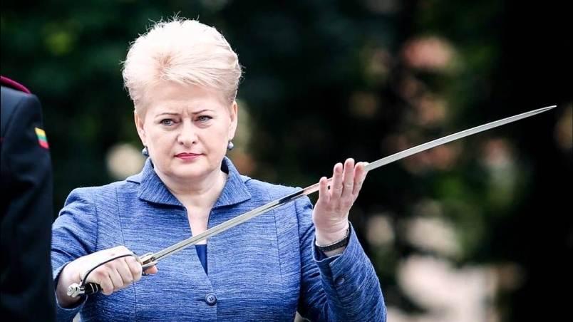 После учений «Запад-2017» ЕСнеобходимо обсудить вопрос «военного Шенгена»— Президент Литвы