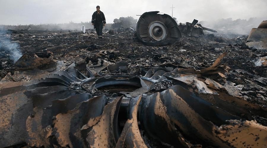 Немецкий адвокат погибших пассажиров MH17: «В катастрофе виновна Украина»