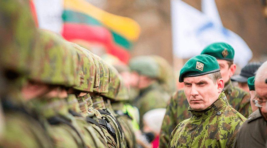 """Dauguma lietuvių neketina ginti nuo agresorių """"supuvusios sistemos"""""""