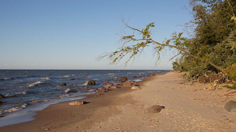 Пляж Сака на северо-востоке Эстонии / Фото: awaytravel.ru