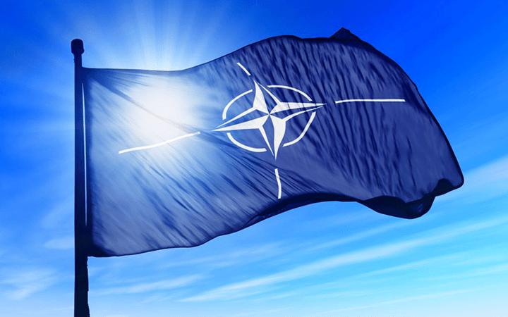 Новые члены НАТО надеялись, что участие в войнах в Афганистане и Ираке даст им шанс повысить уровень подготовки своих вооружённых сил под руководством США.